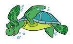 red cross seaturtle logo